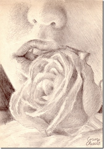 Kiss for a rose pencil drawing  - Sarutand un trandafir desen in creion