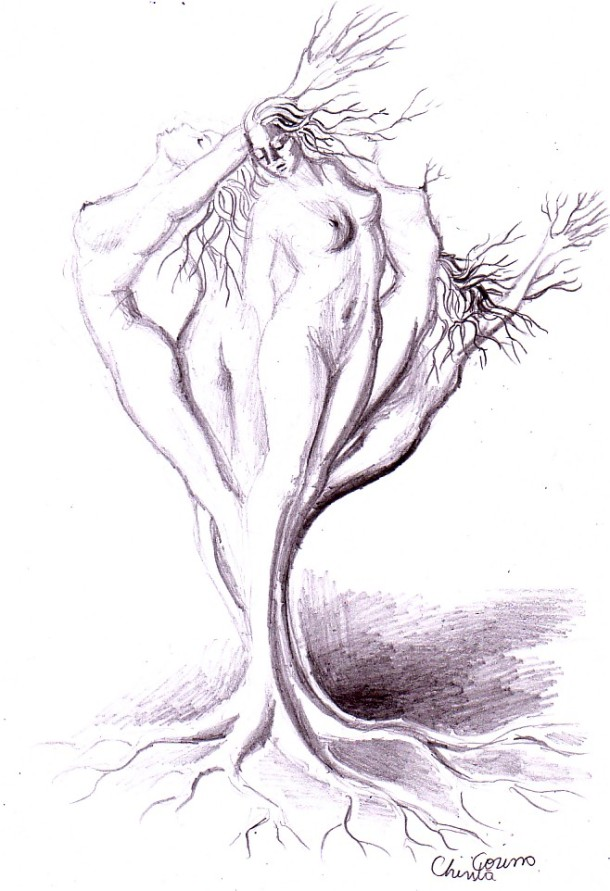 Anthropomorphic tree, pencil drawing