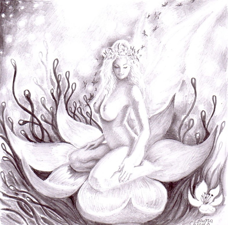 The flower of love, new fantasy pencil drawing